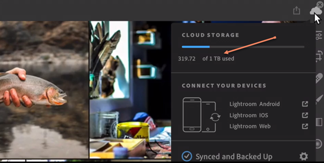 Luminar 3 Vs Lightroom 2019 Classic Cc By Skylum